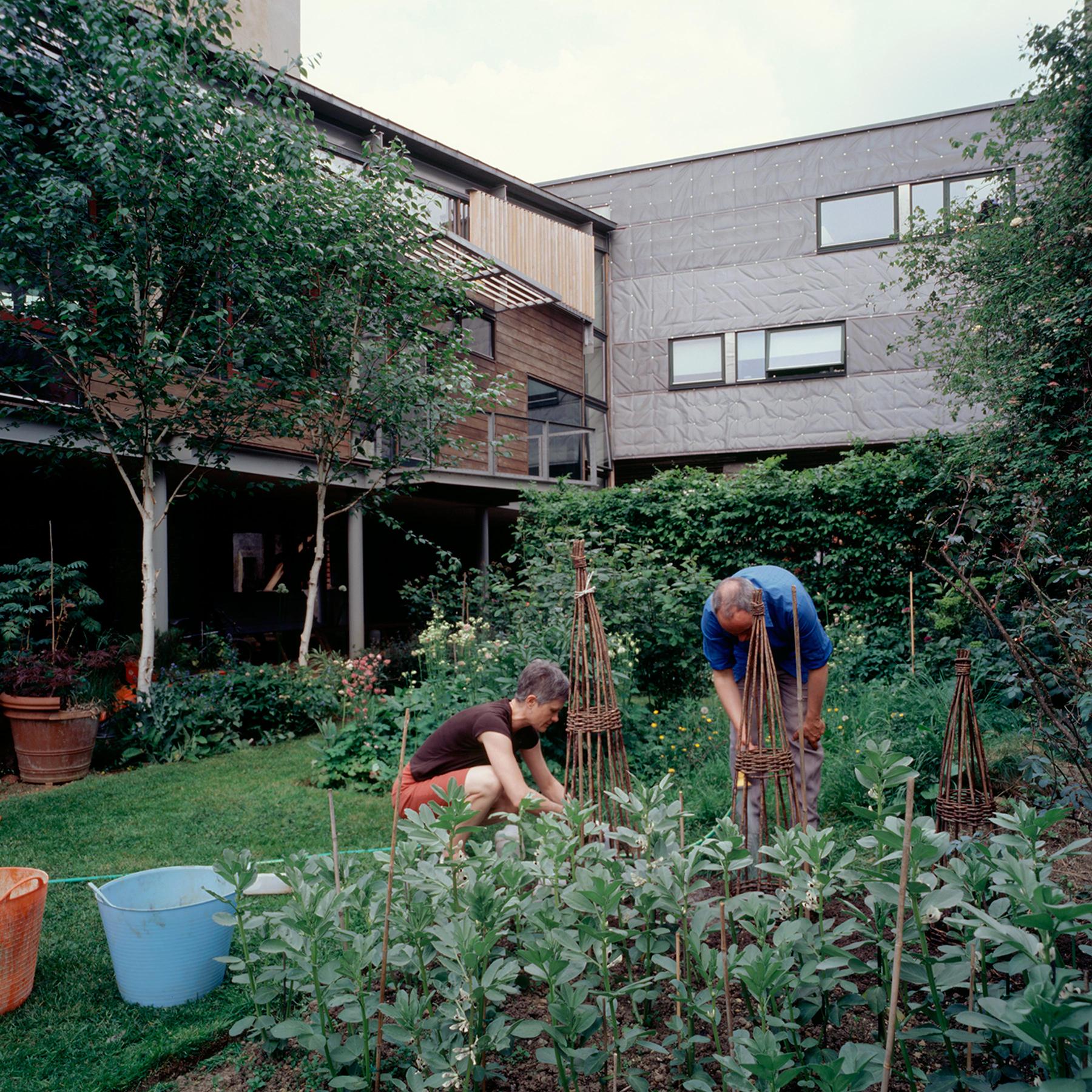 Sarah-Wigglesworth-Architects Stock Orchard Street planting 1800