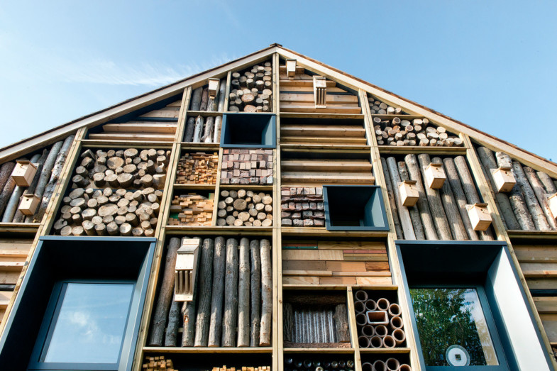 Sarah-Wigglesworth-Architects Mellor FeatureHabWall 1800