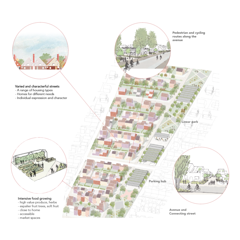 Sarah-Wigglesworth-Architects Letchworth masterplan-phasing 1800x1800