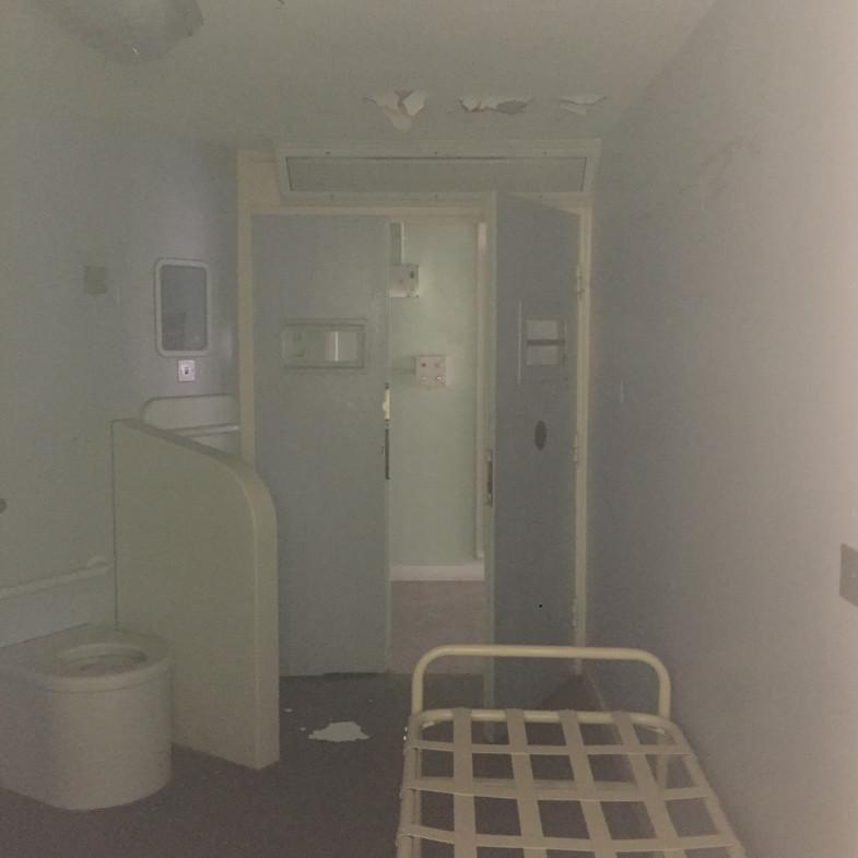 4. cell seen thru a window 1800 sq